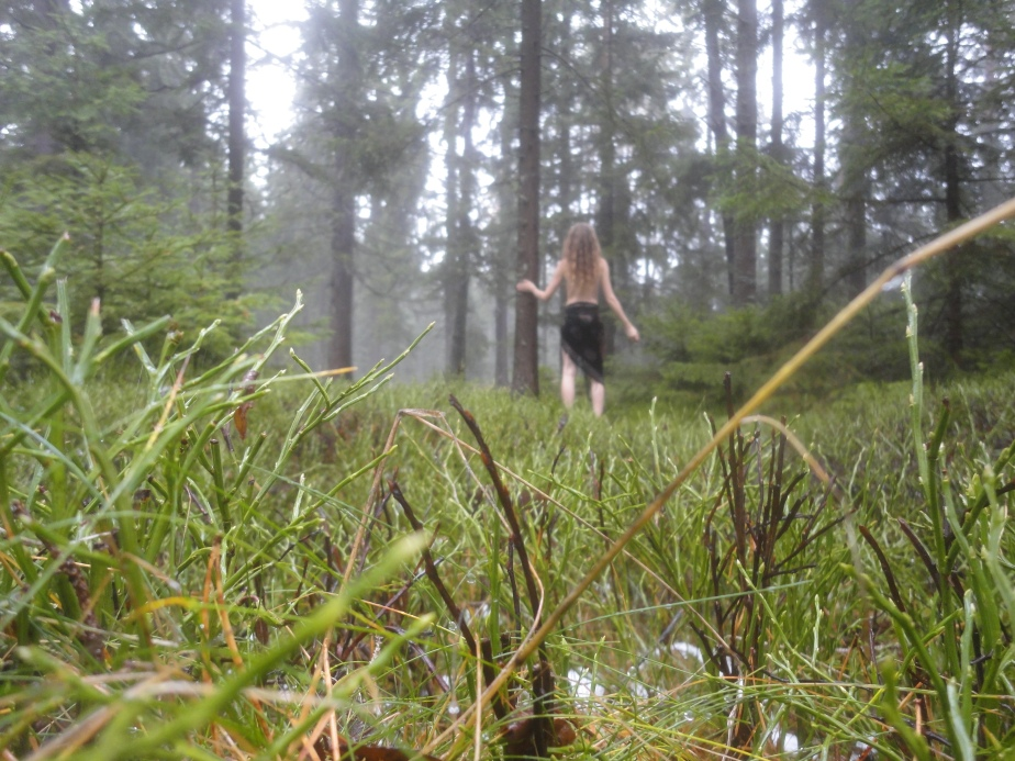 Mein Wildfrauengeburtstag auf derAlm
